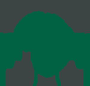 Rosslyn Academy